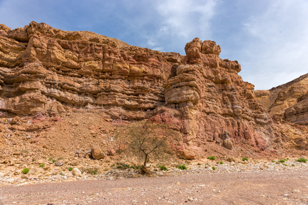 RED CANYON - ISRAEL